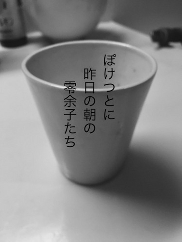 IMG_9177.JPG