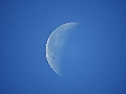 昼の月.jpg