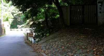 蛍川3.jpg