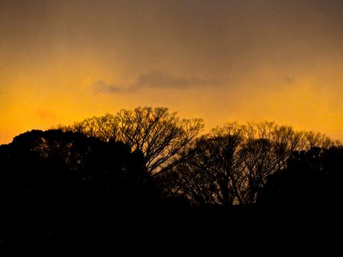 夕陽.jpg