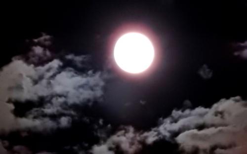 月影.jpg