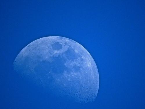 真昼の月.jpg
